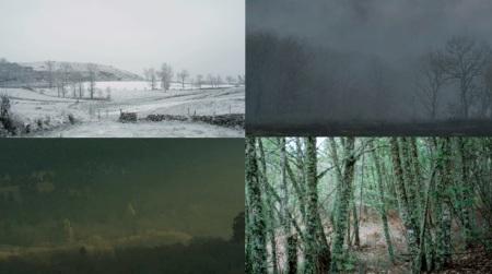 El bosque en Arraianos